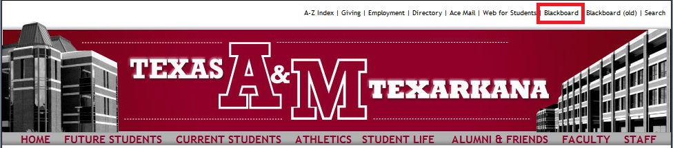 Texas A&M Home Page
